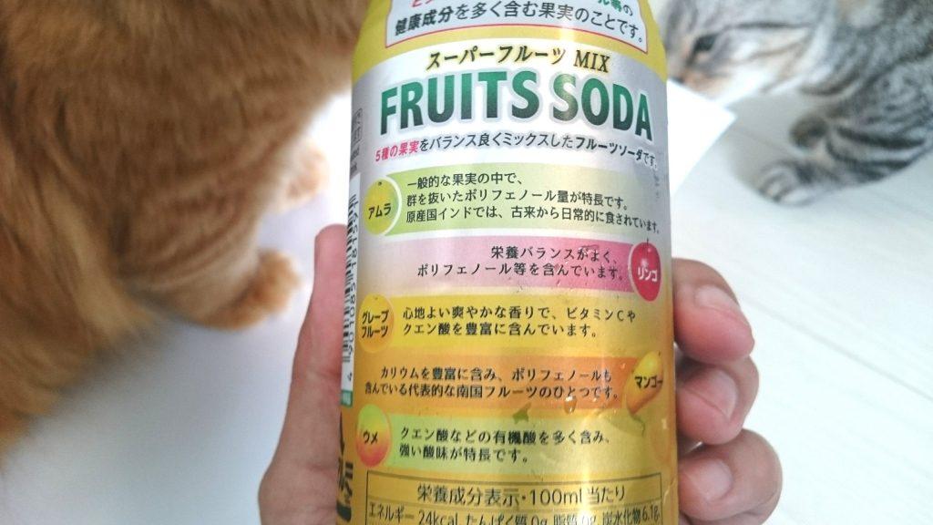 伊藤園「スーパーフルーツMIX フルーツソーダ」は5種類の果実を使用。