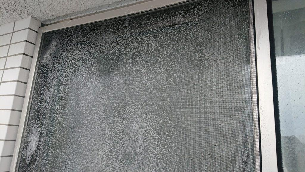 大日本除虫菊「アミライト」の泡が落ち着いてきたところ。