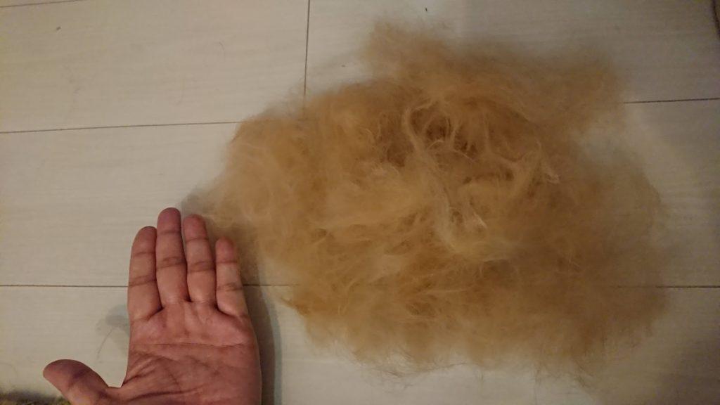 「ファーミネーター 小型猫S長毛種用」で取れた毛。
